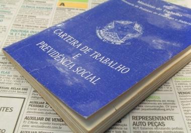 O produtor rural face ao Direito do Trabalho e suas especificidades