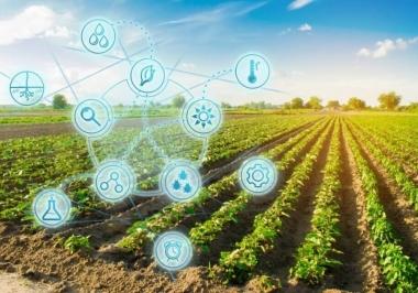 Agronegócio e os Desafios de sua adequação à Lei Geral de Proteção de Dados (LGPD)